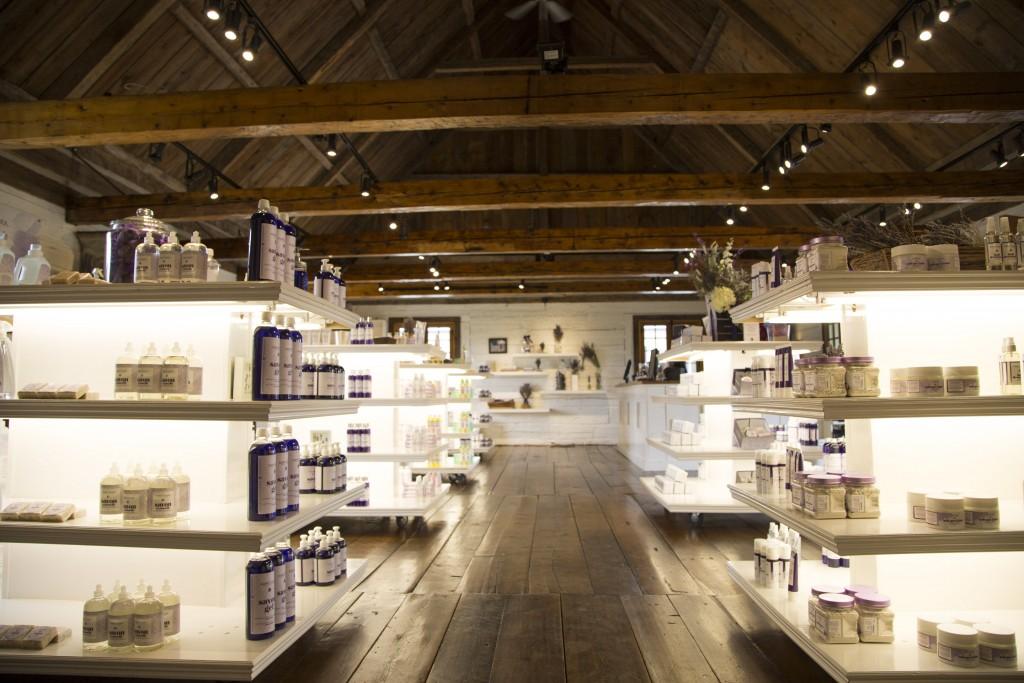 5 raisons de visiter la maison lavande en juillet - Maison de la parfumerie ...