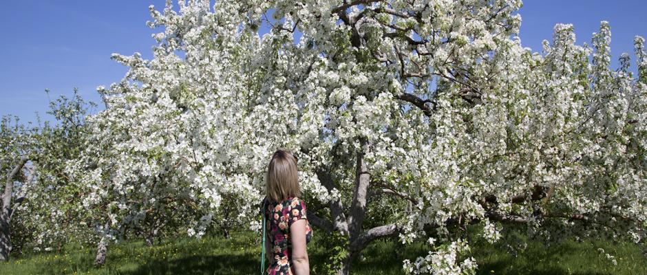 Journées de la nature de la Fondation David Suzuki